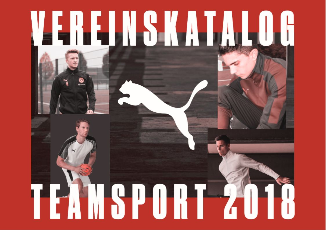 Teamsport 2018